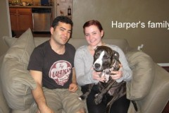 Harper_and_Family