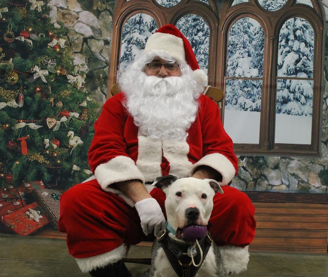 Lucky with Santa